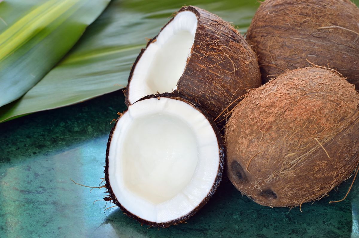 Coconut Meat Pictures