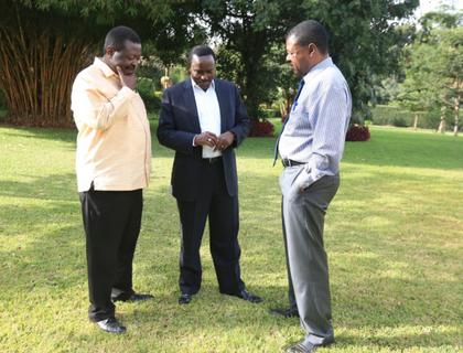 Kalonzo on Constitution push for referendum