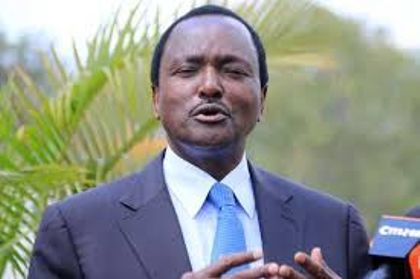 Probe shows non-lethal grenade hurled into Kalonzo's compound